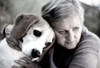 Artros hos hund